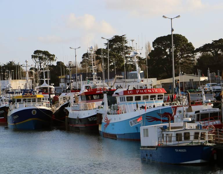 D couvrir les ports de p che bigoudens destination pays - Comptoir de la mer loctudy ...