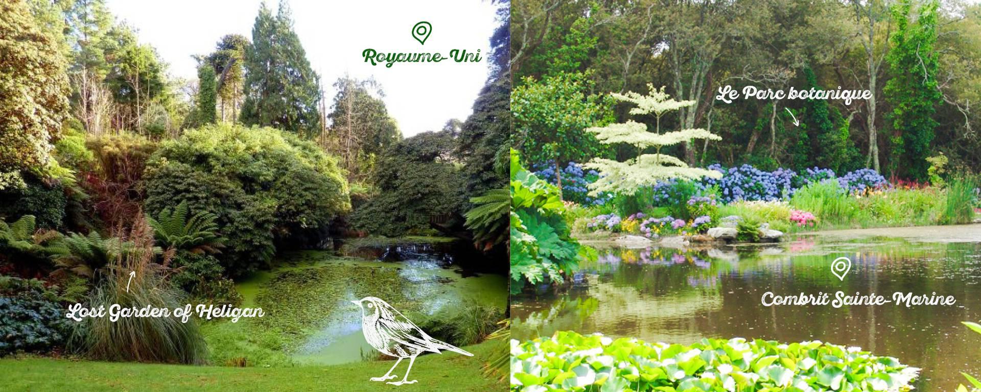 Les rhododendrons du Parc Botanique de Cornouaille n'attendent que vous. © Freepiks