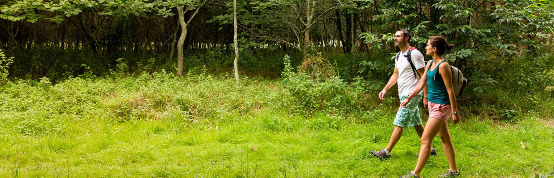 Parcourir la nature en amoureux en Pays Bigouden @ Y Derennes