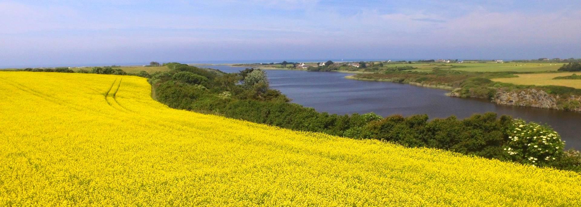 Etang de Trunvel lake at Tréogat, Pays Bigouden © Air Pixel Concept