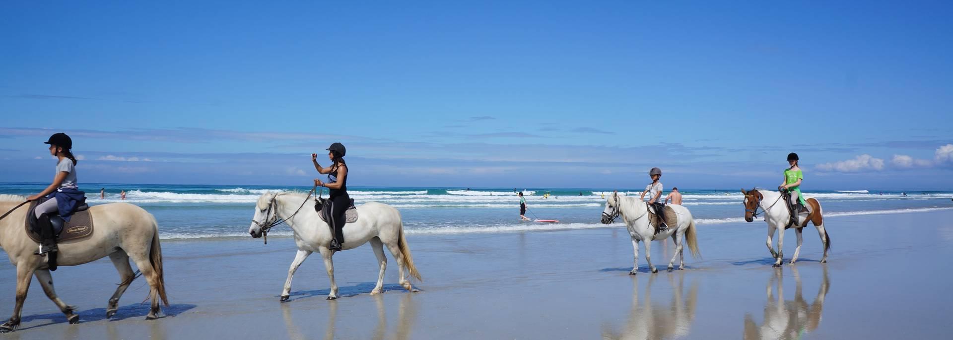 Que faire, que visiter à Saint Jean Trolimon ? Balade à cheval le long de la Baie d'Audierne ©EvaCléret