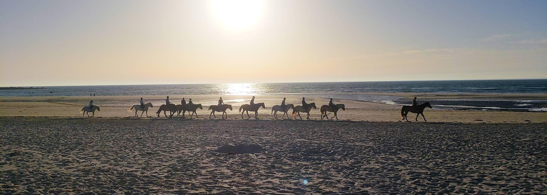 Faire du cheval en Pays Bigouden © E Cléret
