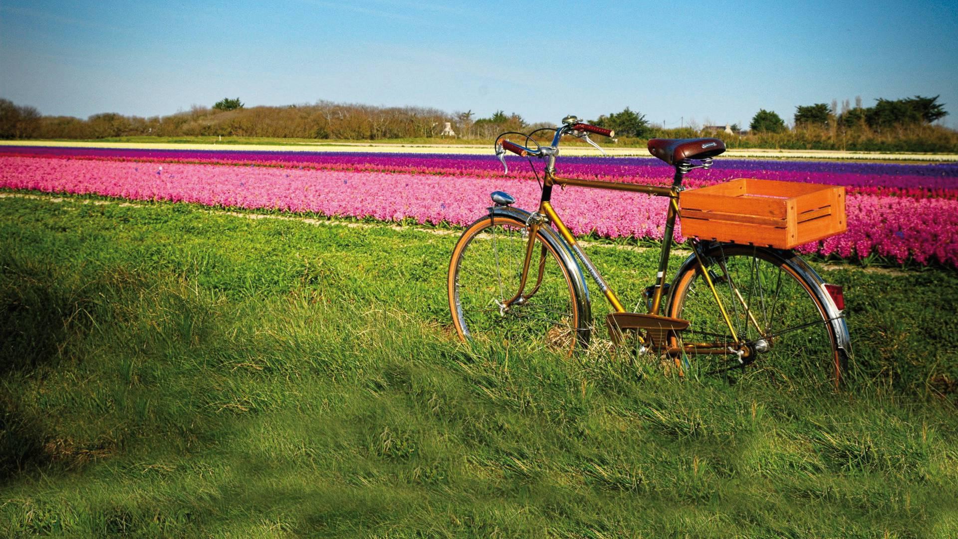 Fête des fleurs à Plomeur© Cycles Vintage