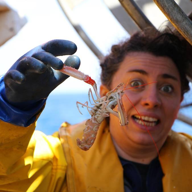 Attack of the Bigouden langoustines © M Pimentel